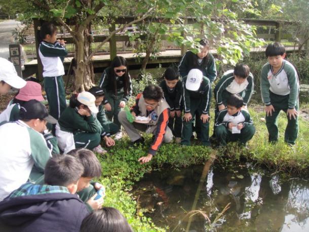 104年財團法人英業達集團公益慈善基金會贊助環境教育活動計畫~關渡自然公園水生家族探奇
